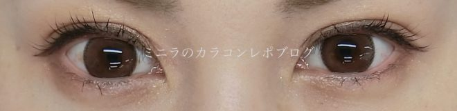 Evercolor 1day natural clear camel 両眼着用